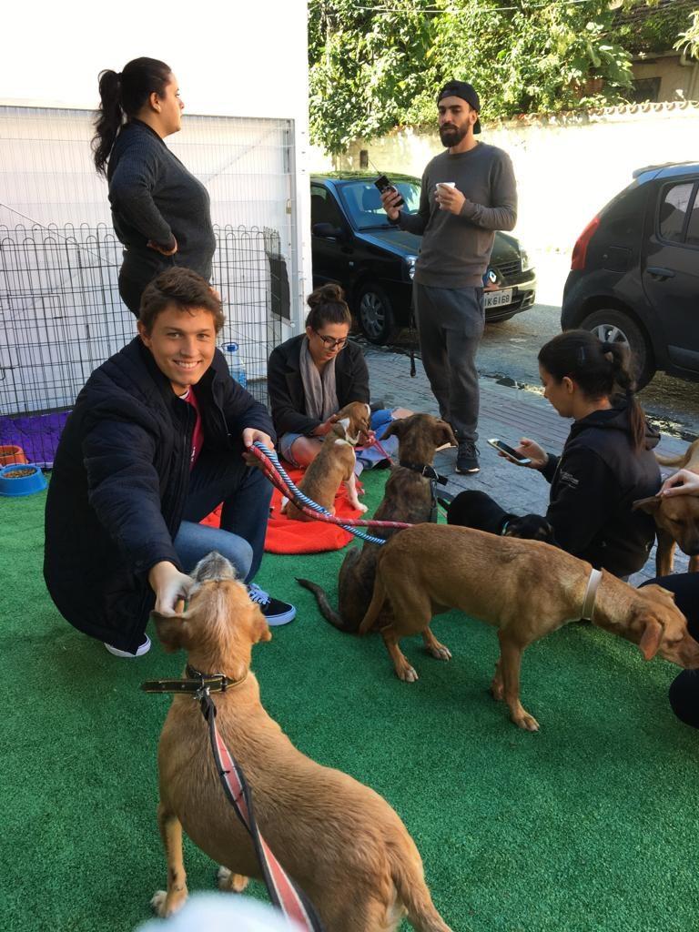 Equipe PodeROSA – Ação com animais 4